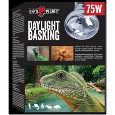 REPTI PLANET DAYLIGHT BASKING 75W - оптимално съотношение на ултравиолетовата UVA радиация, светлинното излъчване и инфрачервеното (термично) лъчение, Чехия 007-41003