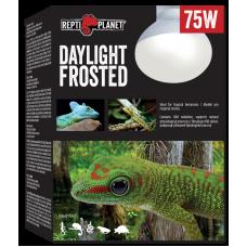 REPTI PLANET DAYLIGHT FROSTED 75W - оптимално съотношение на ултравиолетовата UVA радиация, светлинното излъчване и инфрачервеното (термично) лъчениe, Чехия 007-41023