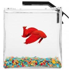 Collar Aquarium Set Betta Set - аквариум за отглеждане на Бети и скариди 14 x 14 x 14 см - 2.7 литра