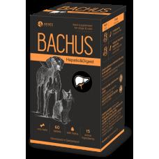 BACHUS HEPATIC & DIGEST - ЧЕРЕН ДРОБ и ХРАНОСМИЛАНЕ - неутрализира токсини, подпомага черния дроб и храносмилането - 60 таблетки, Швейцария - BACHUS-02