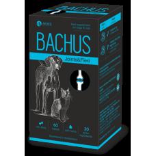 BACHUS JOINTS & FLEXI - СТАВИ & ПОДВИЖНОСТ, за подсилване на ставите и сухожилията - 60 таблетки, Швейцария - BACHUS-04