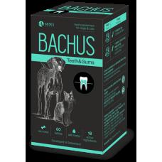 BACHUS TEETH & GUMS - ЗЪБИ & ВЕНЦИ, разгражда плака и намалява възпалението на венците, намалява образуването на плака - 60 таблетки, Швейцария - BACHUS-07