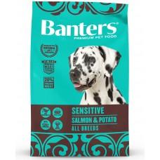 BANTERS Dog Adult Sensitive Salmon & Potato All Breeds - Храна за пораснали кучета от всички породи над 1 година, със сьомга и картофи, подходяща за чувствителни стомаси - Испания 15 кг