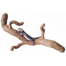 Dragon Coco Tronchos - кокосов клон Medium дължина 80cm COR025