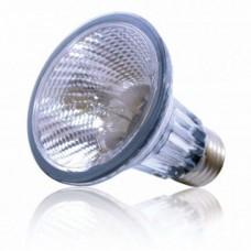 Dragon High - Spot 100w - халогенна лампа