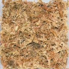 Dragon Sphagnum - Moos торфен мъх 100гр - 5 литра