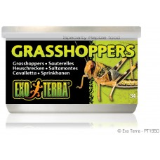 Exo Terra CANNED FOODS SPECIALTY REPTILE FOOD Grasshoppers - консервирани скакалци 34g - ГЕРМАНИЯ - PT1950