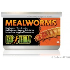 Exo Terra CANNED FOODS SPECIALTY REPTILE FOOD Mealworms - брашнени червеи 34g - ГЕРМАНИЯ - PT1958