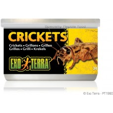 Exo Terra CANNED FOODS SPECIALTY REPTILE FOOD Crickets - консервирани щурци, малки 34g - ГЕРМАНИЯ - PT1960