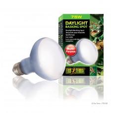 Exo Terra Лампа за терариум дневна светлина DAYLIGHT BASKING SPOT PT2132 - R20/75W