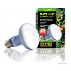 Exo Terra Лампа за терариум дневна светлина DAYLIGHT BASKING SPOT PT2133 - R25/100W