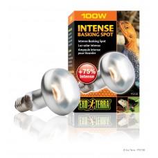 Exo Terra Лампа за терариум Intense Basking Spot Lamp PT2138 - S25/100W