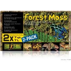 Exo Terra Forest Moss - постелка за терариуми горски мъх - 2 x 7 литра - ГЕРМАНИЯ - PT3095