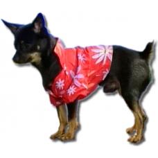 РИЗА - всекидневна, лятна дреха за кучета и котки, ДОГИФЕШЪН БЪЛГАРИЯ