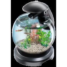Tetra Cascade Globe ЧЕРЕН - стъклена колба с филтър - лесна за настройка и поддръжка - 6,8 литра