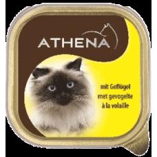 ATHENA – ПАСТЕТ Месо от птици, пълноценна храна за израснали котки, Германия - 100 гр
