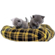 Меко и удобно дюшече за кучета и котки, ДОГИФЕШЪН - БЪЛГАРИЯ