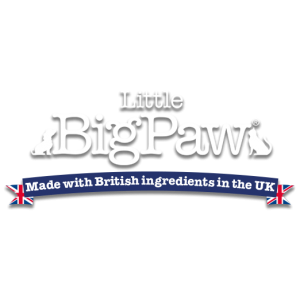 LITTLE BIG PAW АНГЛИЯ
